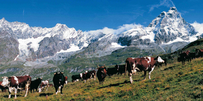 Restino i soldi dei Valdostani in Valle d'Aosta